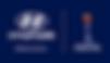 Lyon Logo 3.png