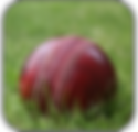 Cricket Icon.png