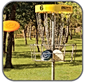 DISC-GOLF.png