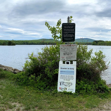 Lake Ninevah Remains Healthy in 2020 Thanks to a Combined Community Effort