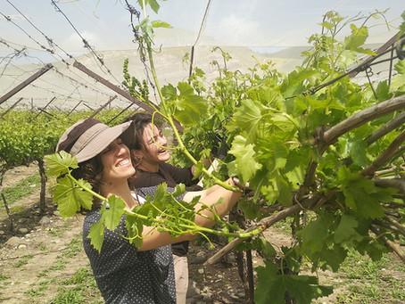 Shabbat Shalom from Keren in Tiberias