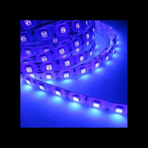 Tira Led 12v DC SMD5050 Ultravioleta