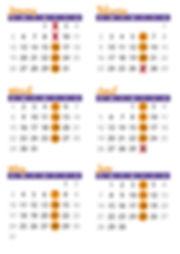 2020 Calendar WEBSITE.jpg