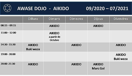 aikido%20adultos_edited.jpg