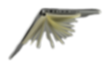 laptop-819285_960_720_edited_edited_edit