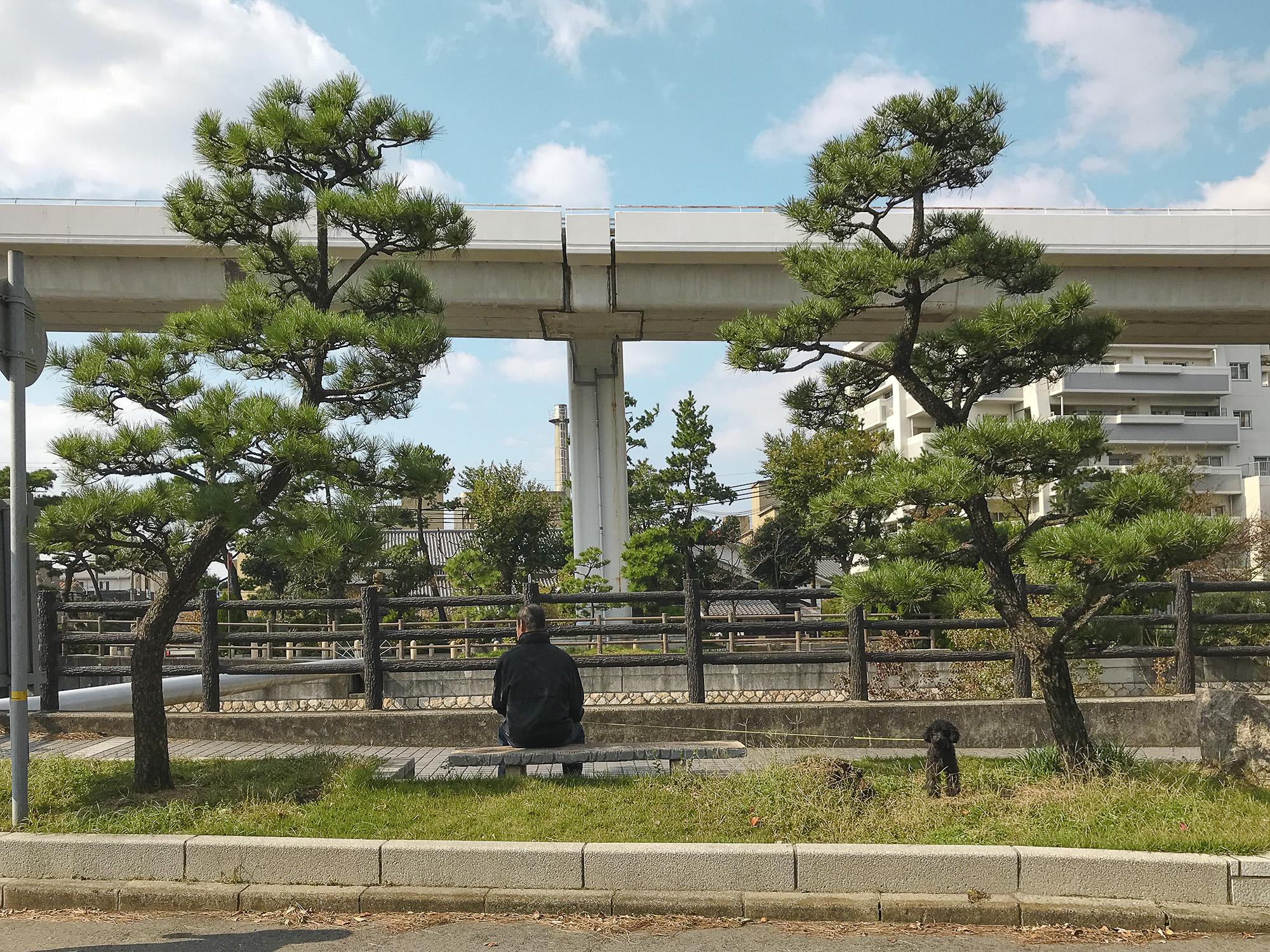 Momiji à Osaka, 2017