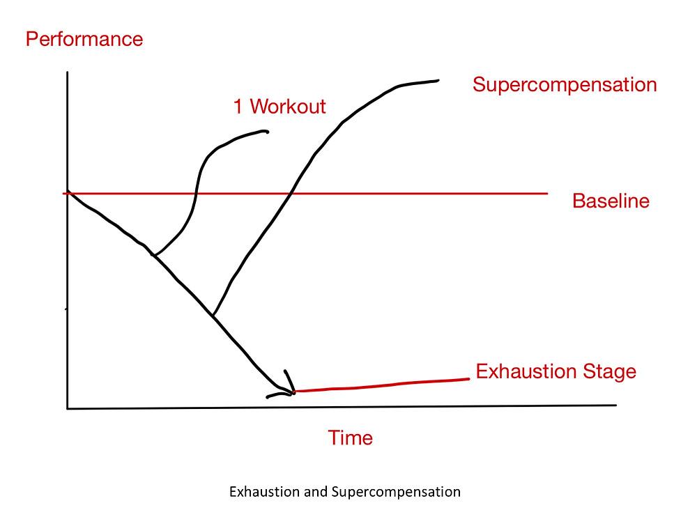 Adaptations to Training