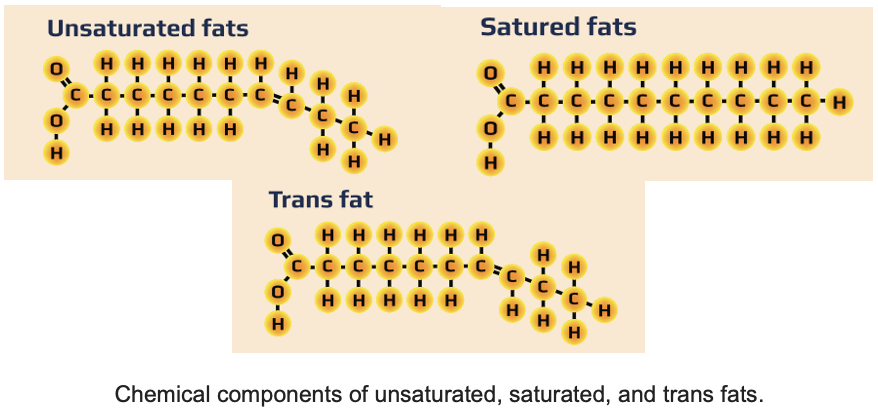 An introduction to Fat