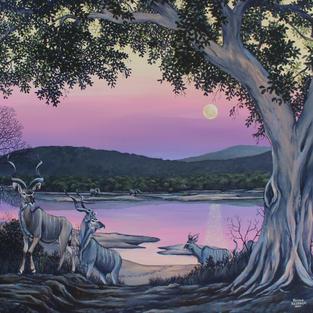 Kudu Moonrise (2nd Place)