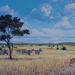 Bushveld Scene, South Africa