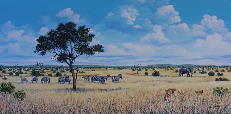 Bushveld scene, South Africa.jpg