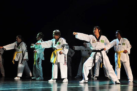 Taekowndo no FIDES Cultural.jpg