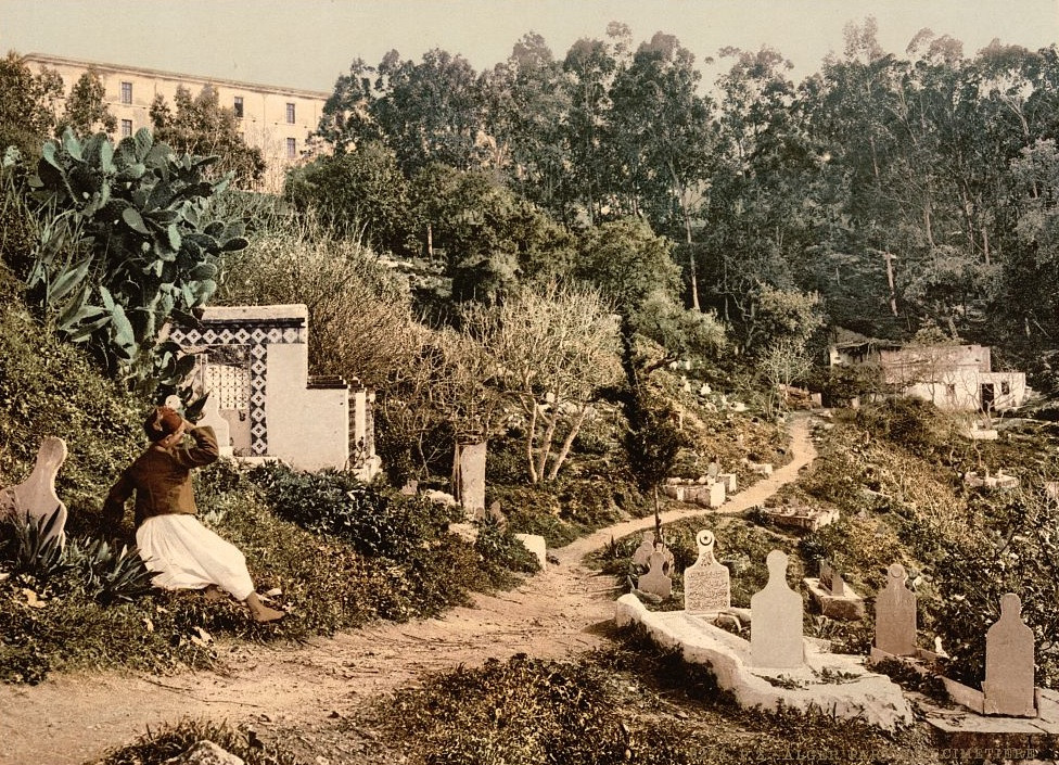 [The cemetery, Algiers, Algeria]