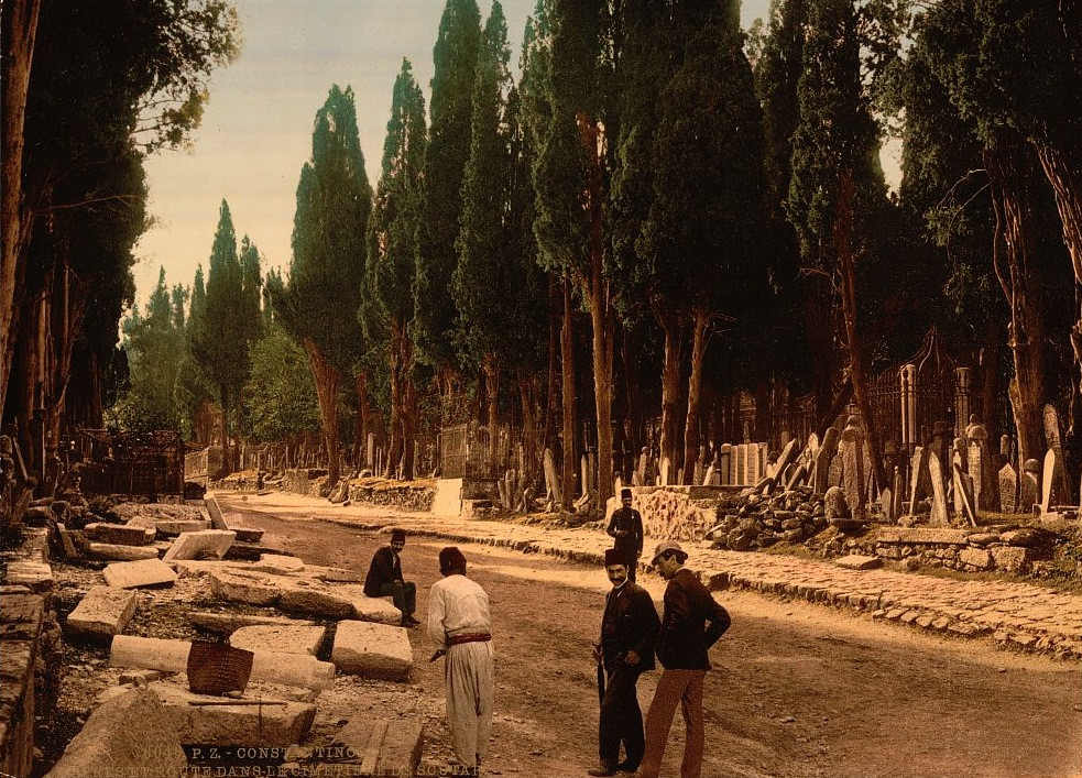 [Cypresses and road leading to the cemetery, Scutari, Constantinople, Turkey]