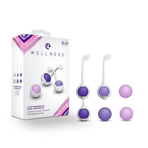 Wellness: 陰道鍛鍊球漸進套裝