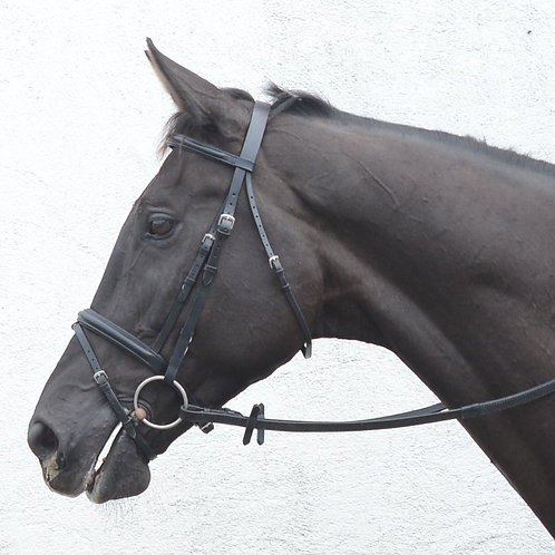 Classic Flash Bridle