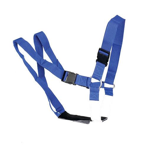 Ram Harness Super Blue