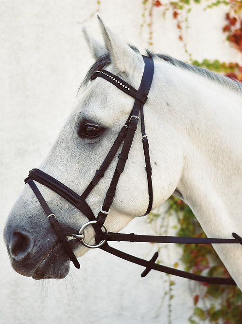 Equisential Bling Bridle