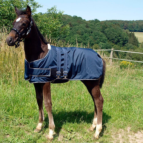 Waldhausen Turnout Rug for Foals