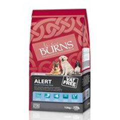 Burns Alert