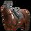 Thumbnail: Competition Saddle Pad