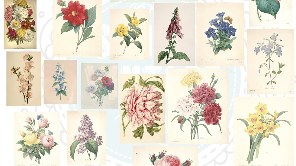 Vintage Book Floral Images Digital Download Pack