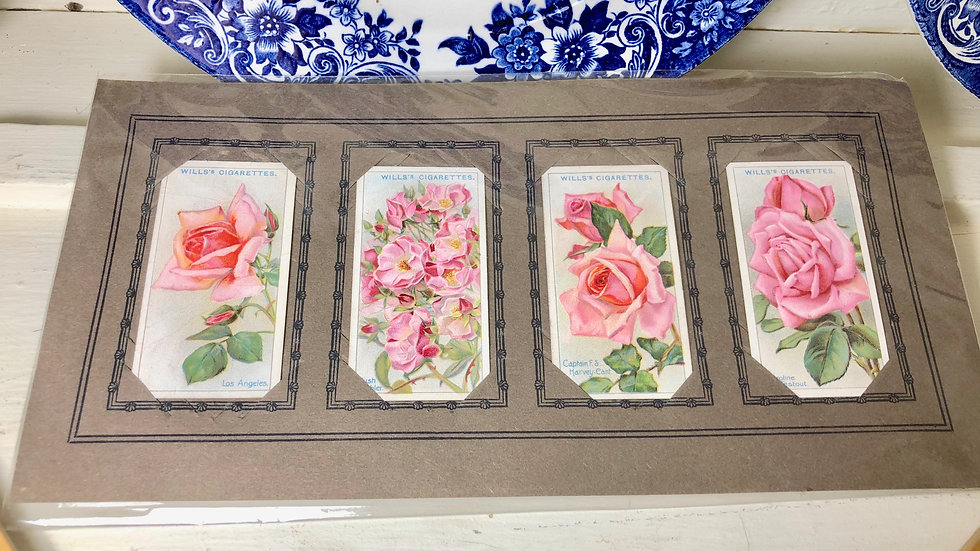 Beautiful Roses - Collections of 4 Wills's Cigarette Cards