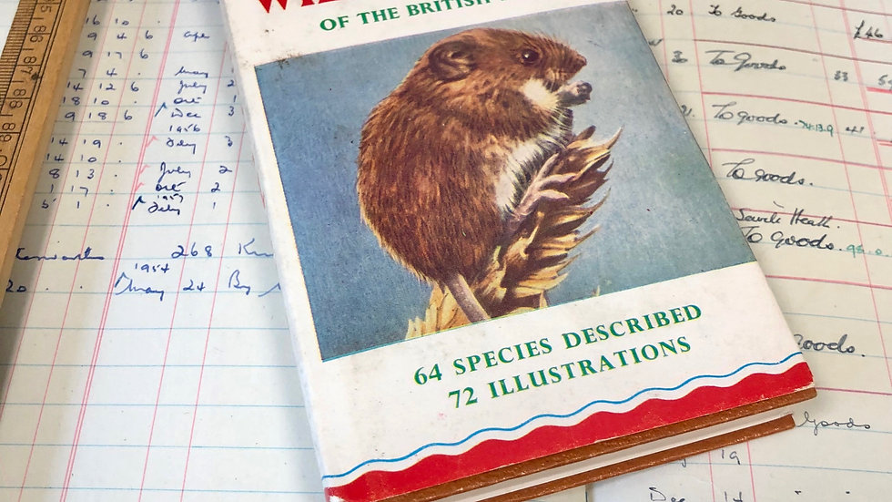 Observers Book of Wild Animals