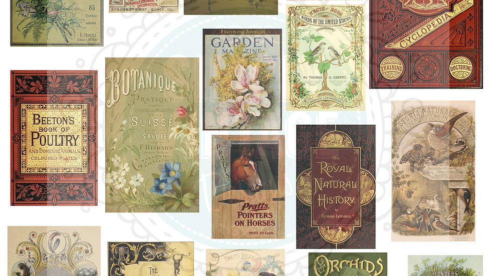 Vintage Book Front Images Digital Download Pack