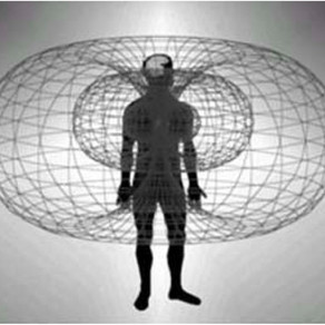 How to Build your Toroidal Field