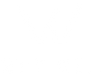 WHY WE logo white.png