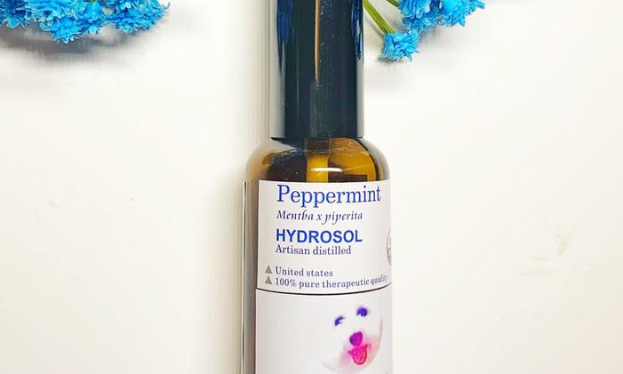 peppermint new h .jpg