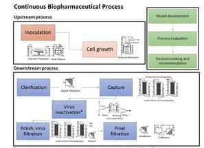 Economic Analysis on Continuous Biopharmaceutical Process