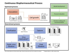 Economic Analysis on Continuous Biopharmaceutical Process