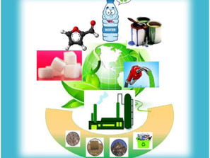 Prof. Ierapetritou and Abhay Athaley in the cover of ChemSusChem