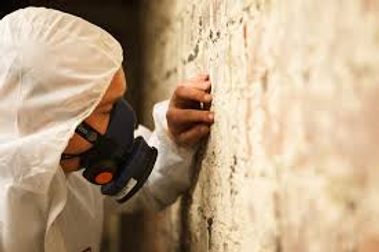 Asbestos surveys