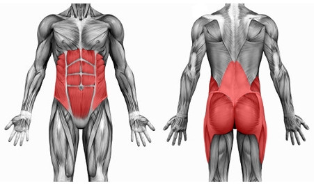 Golf Fitness and The Core, What is it Really?