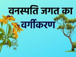 पादप जगत का वर्गीकरण Plant Taxonomy (Classification of Plant Kingdom)
