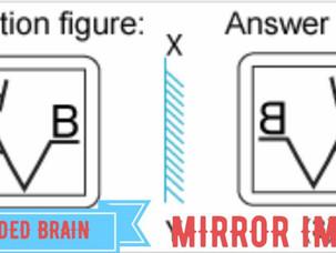 Mirror image : non verbal reasoning