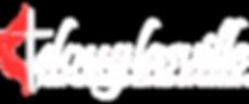 dfumc-white-logo.png