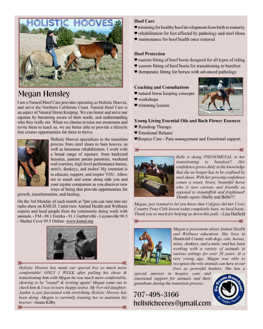 Holistic Hooves Page