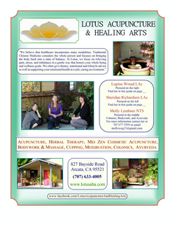 Lotus Healing Arts Ad