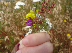 Ladybug Boquet 2