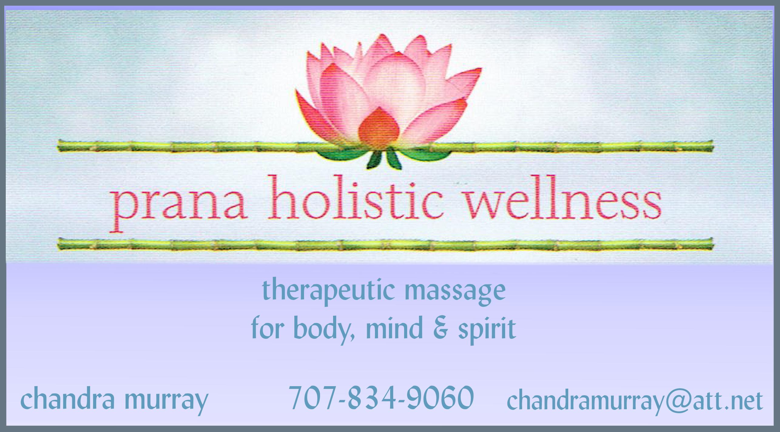 Prana Wellness Slide