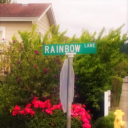 Rainbow Lane Fortuna