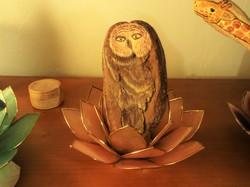Owl Driftwood