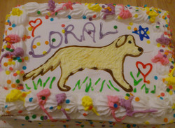 Coral's 11th Birthday