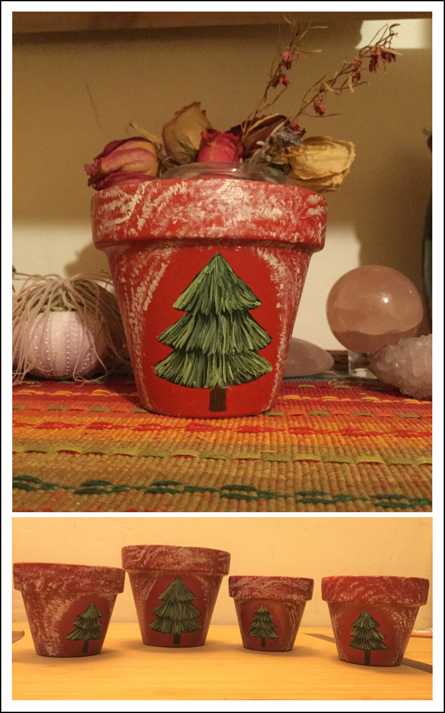 Pine Tree Family Pots
