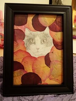 Saskia the Cat