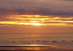 Golden Sunset